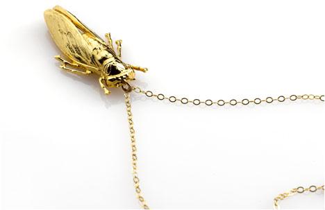 OOLALAA   Cockroach Visit