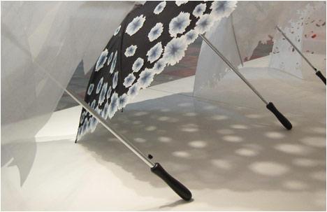 Seasons   The Umbrellas Collection