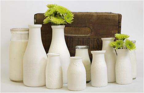Milk Collection | Bottle Vases