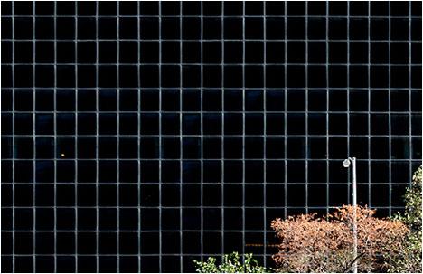 Niv Rozenberg   Photographic Patterns