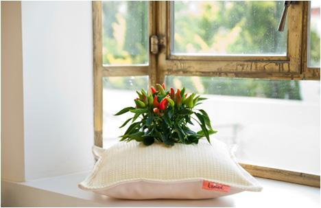 Studio Libel | Nature's Pillow