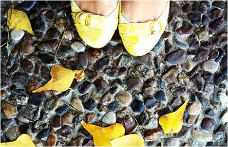 My Shoe Break: Shoe Gazing