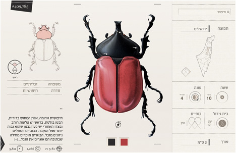 Student Break: Yael Cohen   What's Your Fav Insect?