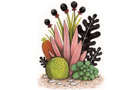 Geffen Refaeli | A Happy Cactus is an Illustrated Cactus